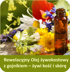 zdrowy blog wpis Rewelacyjny Olej żywokostowy z gojnikiem – żywi kość i skórę