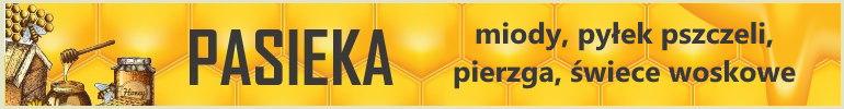 produkty z kategorii pasieka, miody bieszczadzkie, miody, pierzga, pyłek, świece